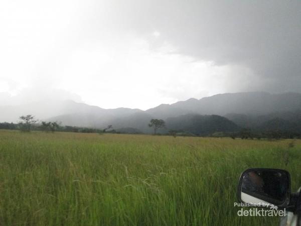 Padang rumput Lembah Bada