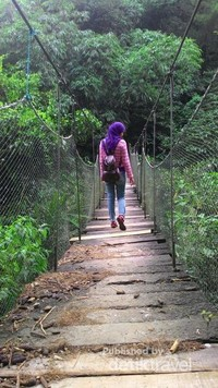 Canopy trail