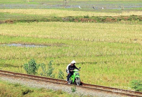 Mungkin ingin cepat sampai atau terburu buru sehingga motor ini mengambil shortcut jalan menyusuri rel  kereta api.