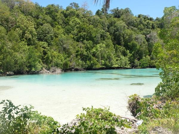 Kehe Daing berada di Pulau Kakaban, salah satu pulau besar di Kepulauan Derawan, Kabupaten Berau, Kalimantan Timur. Belum banyak traveler yang tahu dan berkunjung ke laguna eksotis ini (Afif/detikTravel)