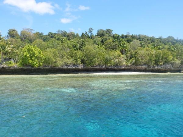 Kehe Daing tepatnya ada di bagian belakang Pulau Kakaban, atau di seberangnya Danau Kakaban yang memiliki ubur-ubur tak menyengat. Beginilah tampak bagian belakang pulaunya (Afif/detikTravel)