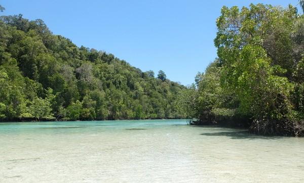 Beginilah penampakann Kehe Daing. Laguna yang luas, memiliki pasir putih dan air hijau toska. Sekelilingnya adalah hutan bakau dan masih sangat alami (Afif/detikTravel)