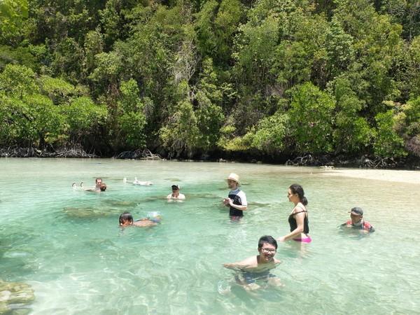 Silakan berenang dan bermain air di sini. Asal tahu saja, Pulau Kakaban sendiri tidak da penghuninya. Jadi serasa, laguna ini milik pribadi saja (Afif/detikTravel)