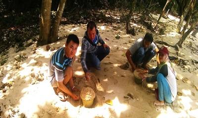 Ketika Komunitas Traveler Ikut Peduli Lingkungan Pulau Mengkudu