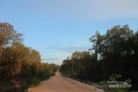Akses jalan menuju Pantai Batu Tambun