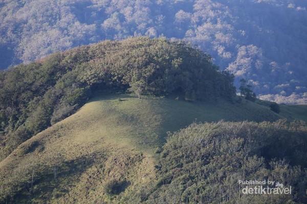 View dari atas Puncak Gunung Mutis