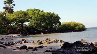 Bukan Cuma Taman Nasional, Baluran Juga Punya Pantai Cantik