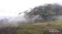Bukit hijau dan berkabut