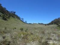Padang rumput di Gunung Butak, tempat ini biasanya digunakan para pendaki untuk bermalam sebelum mendaki ke Puncak. di tempat ini juga terdapat sumber air