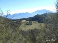 Padang Rumput yang terlihat dari puncak