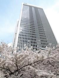 Ropponggi dan Sakura