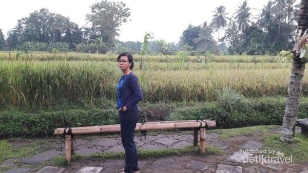 Di depan warung terhampar sawah dengan Gunung Merapi di bagian belakangnya