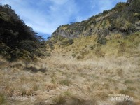 Padang rumput di Gunung Lawu di sekitar puncak