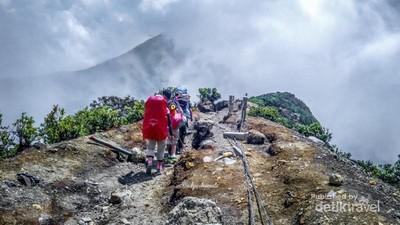 Belajar Makna Hidup di Gunung Gede Pangrango