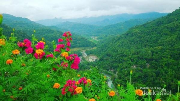 Salah satu spot foto ditebing dengan background aliran sungai yang di tanami beberapa bunga