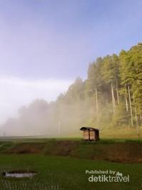 Suasana pagi hari di sekitar Kampung Lolai  yang tidak kalah cantiknya