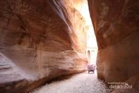 Bagi yang berusia lanjut, ada kereta kuda yang mengantar untuk berkeliling menyusuri kawasan Petra.  Jika ingin berjalan kaki, jaraknya sekitar 5 kilometer dari pintu masuk sampai akhir bangunan di kawasan Petra