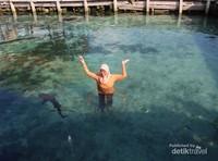 Pose yang benar saat masuk kolam hiu ini adalah tangan jangan menyentuh air dan sebaiknya diangkat ke atas