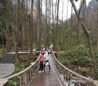 Salah satu jembatan di Golden Whip Stream