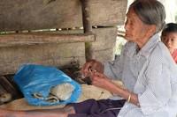 Seorang nenek sedang menganyam pandan hutan untuk dijadikan kerajinan seperti tas