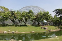 Taman Burung di Taman Mini Indonesia Indah