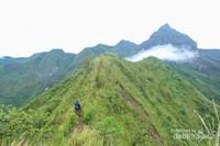 Sepanjang trek pendakian pun menyajikan pemandangan yang aduhai