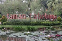 Taman Tabebuya berada di Jalan Mohammad Kahfi I, Jakarta Selatan