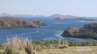 Pemandangan dari puncak Pulau Rinca