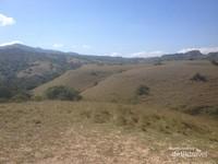 Padang savana di jalur trekking di Pulau Rinca