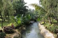 Aliran sungai yang membelah Taman Dadap Merah