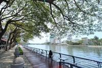 Love River, sungai ikonik di Kaohsiung