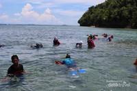 Snorkling di sekitar dermaga Pulau Kakaban