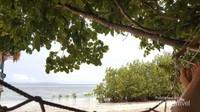 Nikmati segar dan indahnya pemandnagan laut sambil bersantai di hammock.