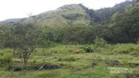 Sabana hijau yang luas sebelum lokasi air terjun