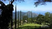 Taman cantik dengan latar belakang perbukitan di Penginapan Manulalu