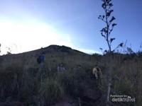 Melepas lelah sejenak sambil menikmati pemandangan di Gunung Batur