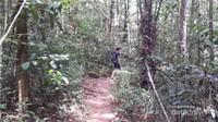 Jalur trekking menuju air terjun cunca wulang sepanjang 2 km