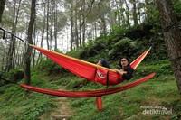 Bersantai di hutan pinus, Curug Nangka, Daun dan Kawung