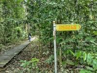 Keasrian Taman Nasional Kutai bisa jadi alternatif destinasi wisata keluarga
