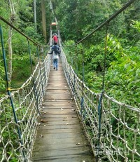 Jembatan Gantung di TN Kutai