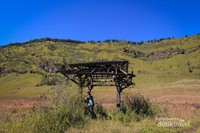 Padang Savanna Bromo, bak dunia lain