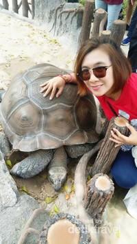 Penulis dan kura kura raksasa Aldabra yang baru berumur 70 tahun