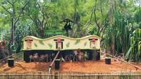 Pulau Si Umang, area khusus satwa primata