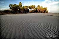 Pantai Oetune dengan padang pasir