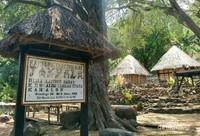 Desa adat Takpala, lokasi yang tepat untuk mengenal kehidupan suku Alor
