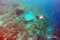 Bubu atau jaring ikan dari bambu khas Alor banyak ditemui saat free dive di Pulau Pura