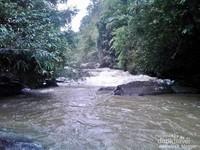 selain acara seni budaya, kita juga ditawarkan wisata alam. Desa Kedang ipil memiliki sungai berarus deras, jernih dan banyak air terjun. bagi yang hobi menjelajah hutan, body tubing, kayak dan arung jeram, disini tempat yang cocok.
