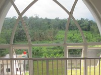 View masjid ini menghadap ke hutan jati dan areal persawahan warga