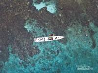 Spot Snorkling terbaik adalah perbatasan antara laut dangkal dan tebing laut.