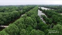 Areanya cukup luas, sekitar 100 hektar